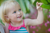 Curious baby exploring banana palm — Stock Photo