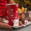 Closeup on plate with christmas cookies and cup of hot chocolate — Stock Photo