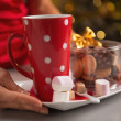 Closeup on plate with christmas cookies and cup of hot chocolate — Stock Photo #33778105