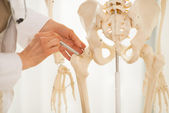 Doctor pointing on femur of skeleton — Stock Photo