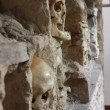 Stock Photo: Skull tower detail - 2