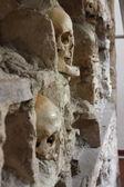 Kafatası kule detayı - 2 — Stok fotoğraf