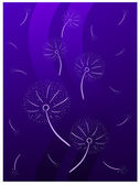 Violet dandelions — Stock Photo