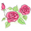 Sketch of pink roses in transparent colors - Stock Photo