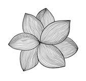 Fleur de vecteur — Vecteur