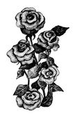 Black and white dotted hand drawn illustration of five roses — Stock vektor