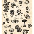 Big set of vintage hand drawn vector flowers on textured backgro — Stock Vector