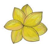 Yellow flower — Stock Vector