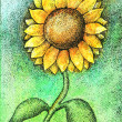 Colorful watercolor and ink sunflower illustration — Stock Photo