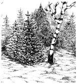 Winter forest. Black and white hand darwn landscape. Vector illu — Stock Vector
