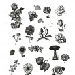 Vector set of hand drawn vintage flowers for Your design — Stock Vector