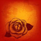 手描きのベクトル カード rose — ストックベクタ