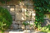 Casa stonewall, rubinetto dell'acqua, impianti — Foto Stock