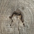 Old weathered wooden board knar — Stock Photo