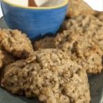 Homemade oatmeal cookies — Stock Photo