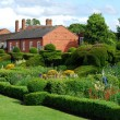 Stock Photo: English garden in summer