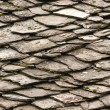 Stock Photo: Stone tiles of slate-roof house