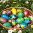 Colorful Easter eggs — Stock Photo #45159939