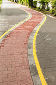 Marked bicycle path — Stock Photo