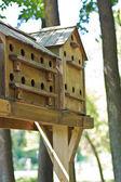 Birdhouses on a tree — Stock Photo