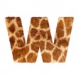 Letter from giraffe style fur alphabet. Isolated on white background. With clipping path. — Stock Photo