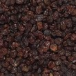 Black raisins — Stock Photo