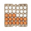 Stock Photo: Twenty four of white and brown eggs in box