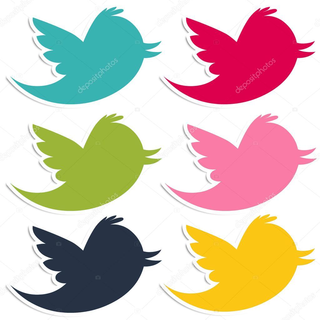 颜色鲜艳的鸟– 图库图片