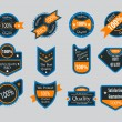 Royalty-Free Stock Vektorgrafik: Collection of vintage colorful design labels