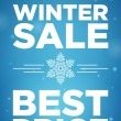 Winter sale and Best price banner — Stock Vector