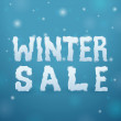 Ice Winter Sale — Stock Vector
