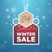 Pendant Big winter sale — Stock Vector