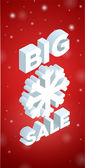 Winter Big Sale and big snowflake — Stock Vector