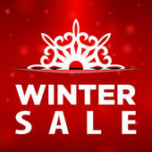 Winter sale Snowflake in pocket — Stock Vector