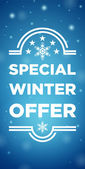 Winter sale special offer — Stock Vector
