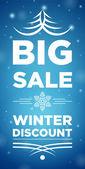 Big Sale winter discount — Stockvektor