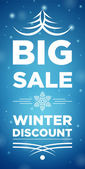 Big Sale winter discount — Stockvektor