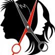 Salon concept logo — Stock Vector