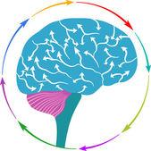 Hjärnan arrow logo — Stockvektor