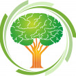 Brain tree logo — Stockvectorbeeld