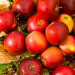 Ripe red apples and leaves - Stock Photo