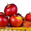 Red apples and leaves - Stock Photo