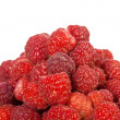 Ripe wild raspberries — Stock Photo
