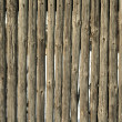 Stock Photo: Old fence poles