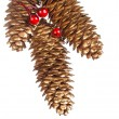 Stock Photo: Gold fir-cone