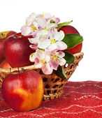 Red apples and flowers — Stock Photo