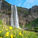 Iceland — Stock Photo #13345703