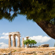 Ruins of ancient temple in Corinth, Greece - archaeological site — Stock Photo #28729467