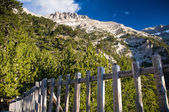 Mount Olympus, tallest mountain on Greece — Stock Photo