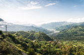 Lush green valley — Stock Photo